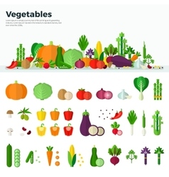Banner icons of vegetables healthy food vector