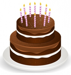 chocolate brithday cake and candles vector image vector image