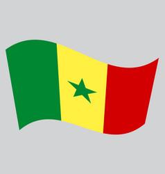 Flag of senegal waving on gray background vector