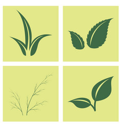 leaves icon set isolated on background various vector image vector image