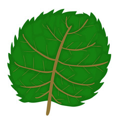 Linden leaf icon cartoon style vector