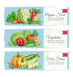 Organic vegetables vegetarian banners set vector image vector image