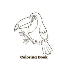 Toucan bird cartoon coloring book vector image vector image