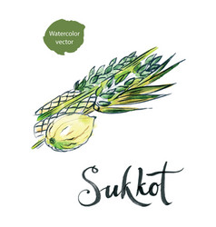 watercolor lulav and etrog sukkot plants vector image