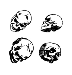 Skull in different positions hand drawing vector