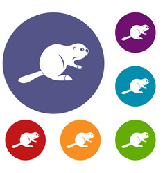 Canadian beaver icons set vector