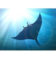 Dark manta ray in ocean vector