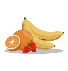 fruits nutrition healthy image vector image