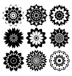mandala collection vector image