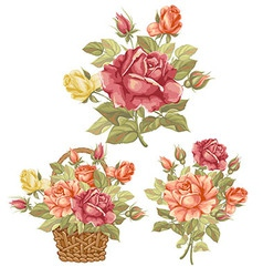 Rose set vector image vector image