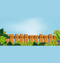 Wooden fence in garden vector