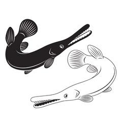 fish sargan vector image
