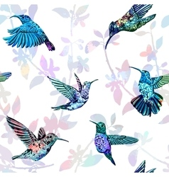 Hummingbird seamless pattern Hand drawn tropical vector image