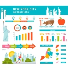 Set Infographics of New York City vector image