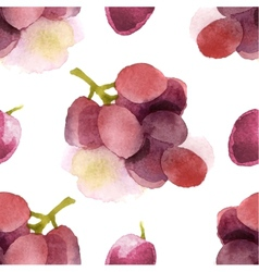 watercolor grapes seamless vector image vector image