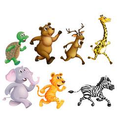 wild animals running on white background vector image
