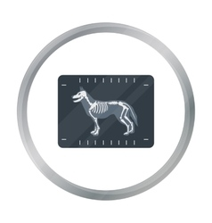Dog x-ray icon in cartoon style isolated on white vector image vector image