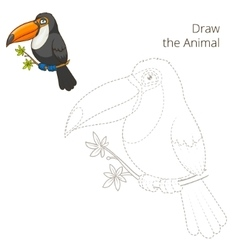 Draw the animal toucan educational game vector