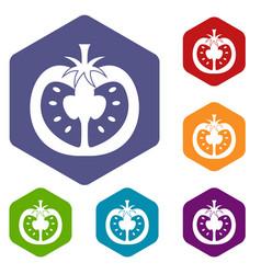 Half of tomato icons set hexagon vector