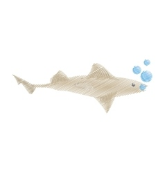 hand drawing shark fish ocean species bubbles vector image