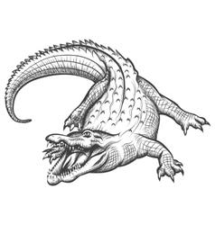 Hand drawn crocodile vector image