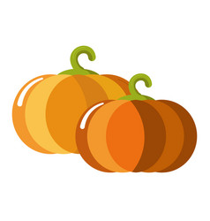 Ripe juicy sweet pumpkins with curled stem vector