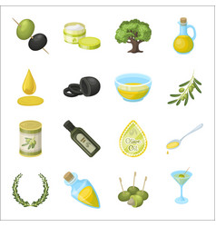 Olives tree branch and other products from vector