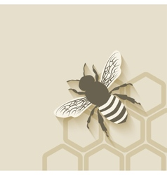 Bee honeycomb background vector