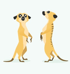 Meerkat cartoon vector
