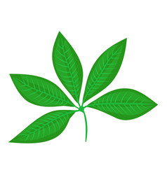 Plant leaf icon cartoon style vector
