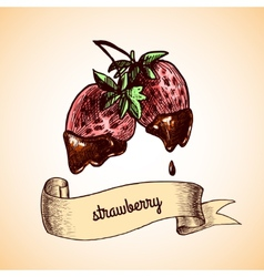 Strawberry chocolate sketch vector