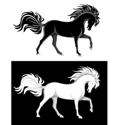 Black and white horses vector