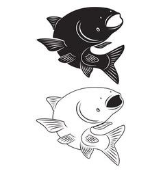 Asian carp vector image vector image