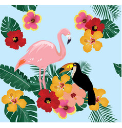 flamingo and toucan vector image vector image
