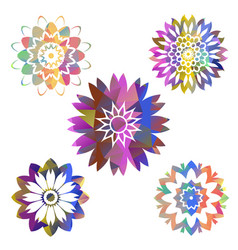 mandala colorful polygons collection vector image