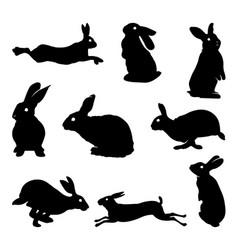 rabbit silhouette vector image vector image