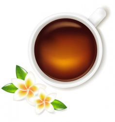 tea cup with frangipani vector image vector image