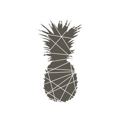 Pineapple abstract vector