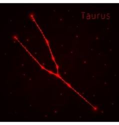 Taurus silhouette of lights vector image