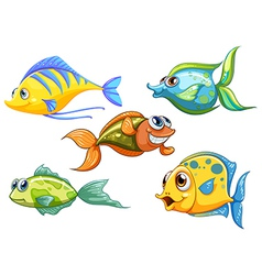 Five colorful fishes vector image