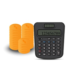 calculator and coin vector image