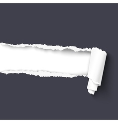 Torn paper with a scroll vector