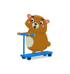 Brown bear on scooter vector