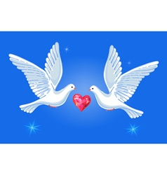Soaring doves pair with passionate heart vector
