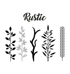 decorative rustic vintage icons set vector image vector image
