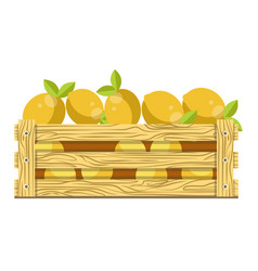Fresh sour lemons with leaves in wooden box for vector