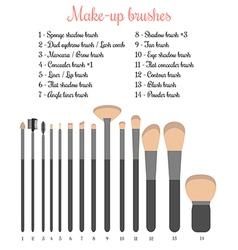 Make-up brushes set vector