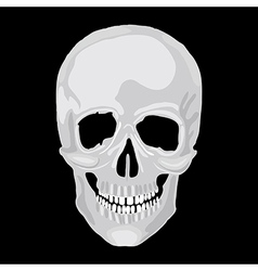 Scull human vector