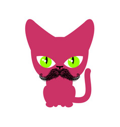 Cat hipster with mustache isolated pet on white vector