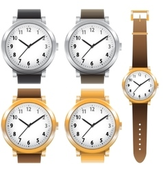 Gold and chrome watches classic design expensive vector
